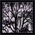 Twilight Branches 2 (Pixelized)